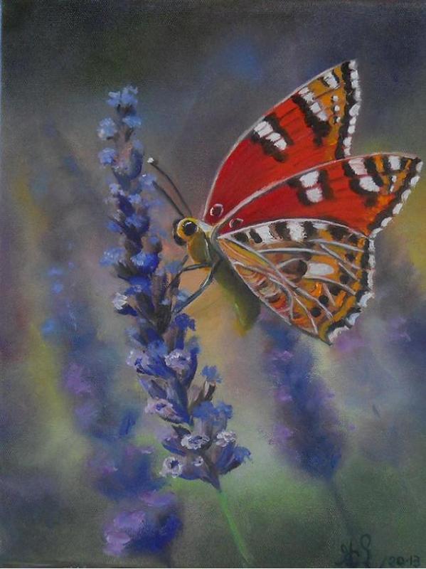 Brin de lavande et papillon