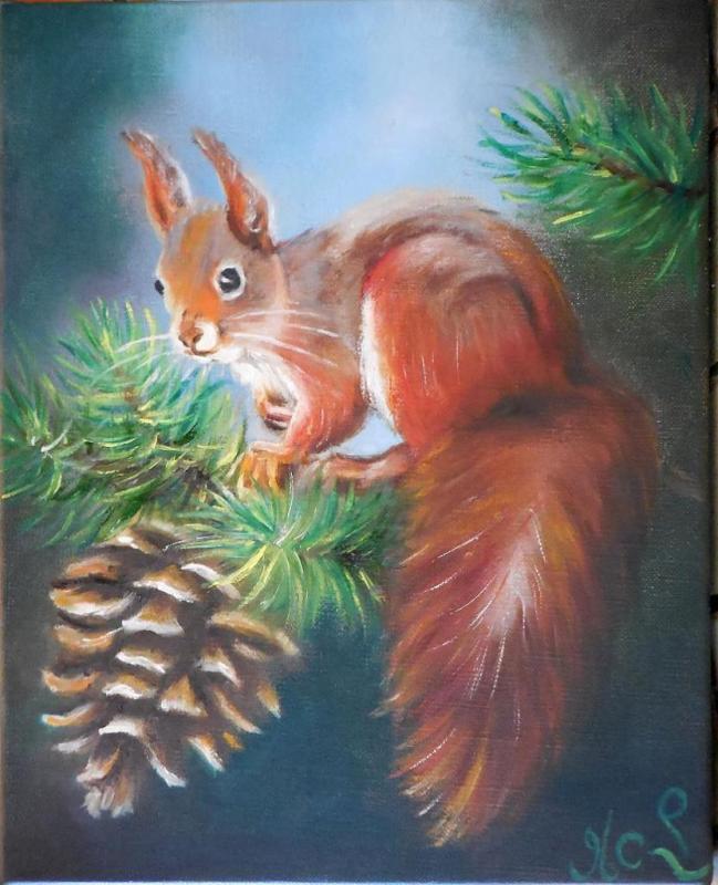 Ecureuil et pomme de pin