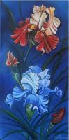 Majestueux iris (collection privée)