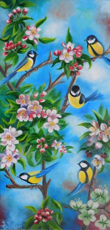 Mésanges et pommier en fleurs
